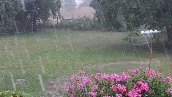 Pogoda na jutro: i deszczowo, i słonecznie. Lokalnie tylko 14 stopni