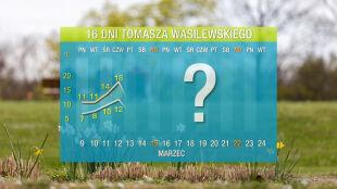 Pogoda na 16 dni: wybuch wiosny i nagłe ochłodzenie