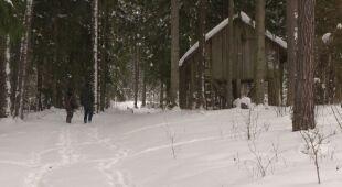 Dokarmianie zwierząt zimą jest konieczne